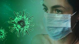 Corona Virus und Fenster